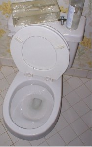 Toilet_370x580