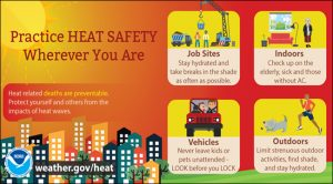A graphic detailing heat safety tips.